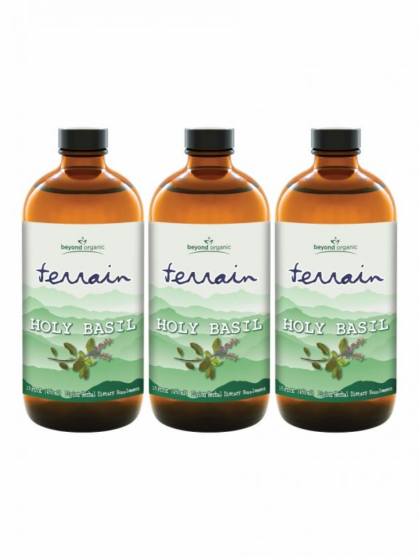 Terrain Holy Basil (3 Pack)